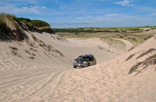 art's dune tours