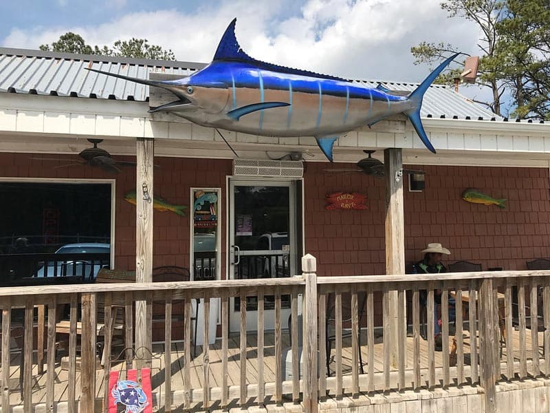 Top 3 lunch spots in virginia beach reflections from the for Fish store virginia beach