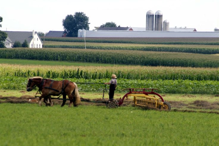 Amish Country 2